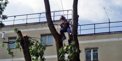 Alpinism utilitar cu aplicatii in taieri, toaletari arbori